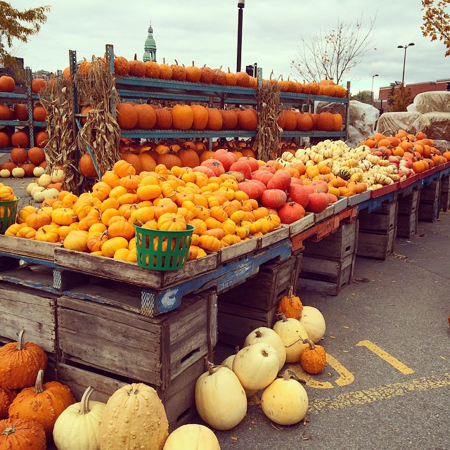 I love Montréal in the fall ❤️? #montreal #attwatermarket #attwater #quebec #travel #wanderlust #thriftynomads