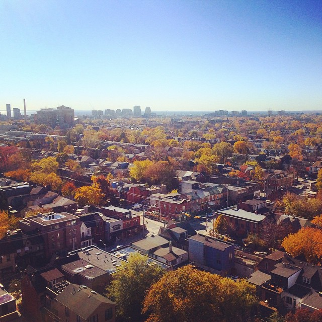 Good morning Toronto, you colourful thang, you. #fall #toronto #canada #travel #globetrotting #thriftynomads