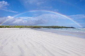 Tortuga Bay, Santa Cruz, Galapagos