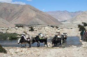 Kharta Valley Trek Tibet