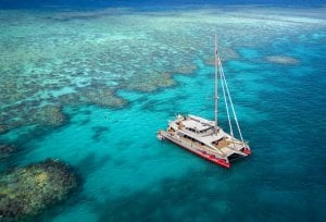 Cairns Great Barrier Reef Catamaran Tour