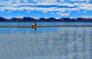 6-Day Lhasa & Lake Namtso Small Group Tour